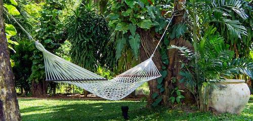 Ingyenes stockfotó Békés, függőágy, kert, pihentető témában
