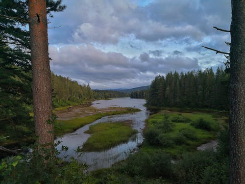 Foto profissional grátis de ambiente, azul, conhecimento, ecológico
