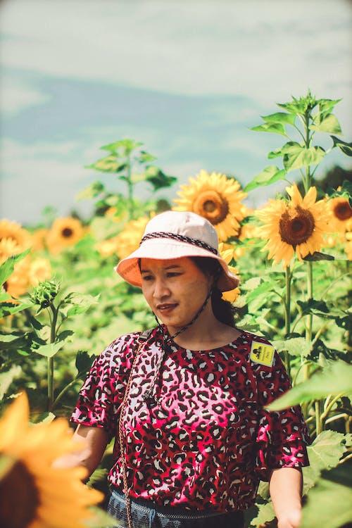 人, 向日葵, 女人, 漂亮 的 免费素材照片
