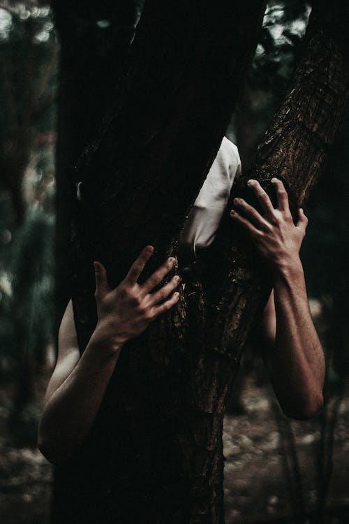 Persona Abrazando árbol