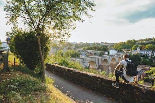 Бесплатное стоковое фото с активный отдых, архитектура, Взрослый, дерево