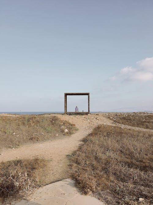 Fotos de stock gratuitas de césped, marco de madera, secar, sentado