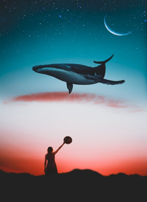 Whale and Woman Holding Ball Painting