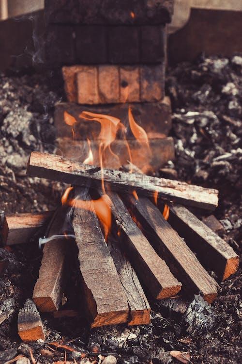 Gratis stockfoto met bonfire, heet, hitte, hout