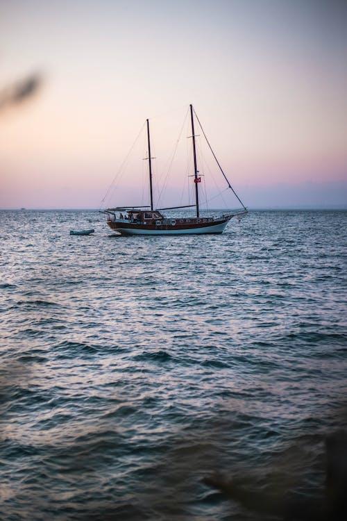 indyk, łódź, morze