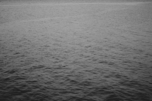 Foto profissional grátis de amplo, desfocado, filme, mar