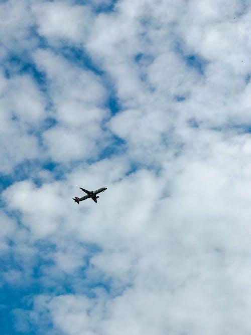 Imagine de stoc gratuită din albastru, avion, nori