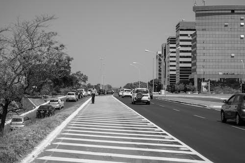 Monochrome Photo Of Sidewalk During Daytime