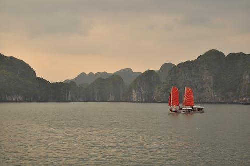 คลังภาพถ่ายฟรี ของ กล้องนิคอน, ขยะจีน, อ่าวฮาลอง, เกาะแมวบา