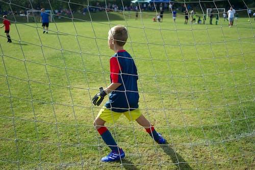 Immagine gratuita di calcio, campo, gioco, goal