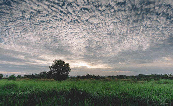 Free stock photo of landscape, sky, clouds, field