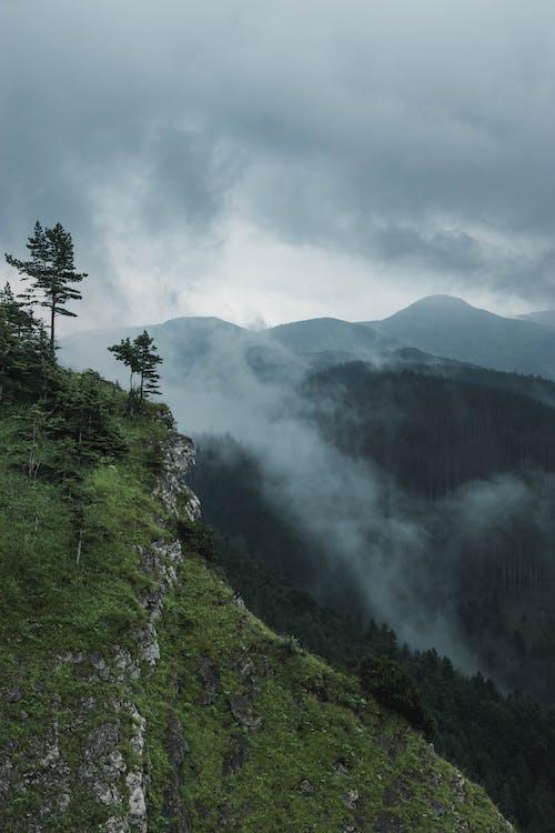 ミスト, ムーディー, 山, 山岳の無料の写真素材