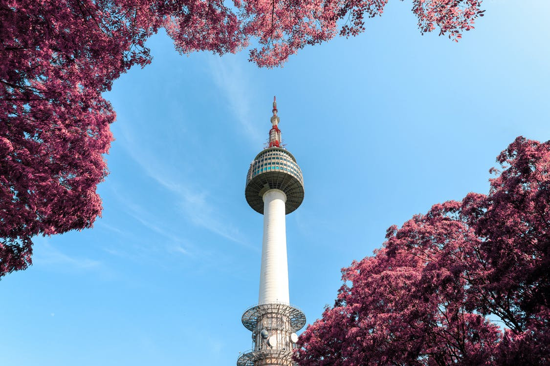 Low-Angle Photo of N Seoul Tower