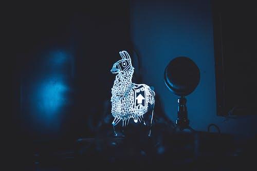 Gratis lagerfoto af azurblå, kamp, luz, lys refleksioner