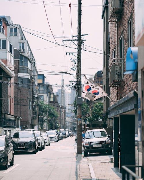 朝鮮的, 街, 韓國, 首爾 的 免費圖庫相片
