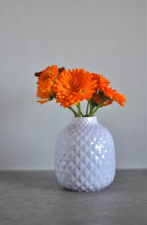 White Ceramic Vase With Orange Flowers