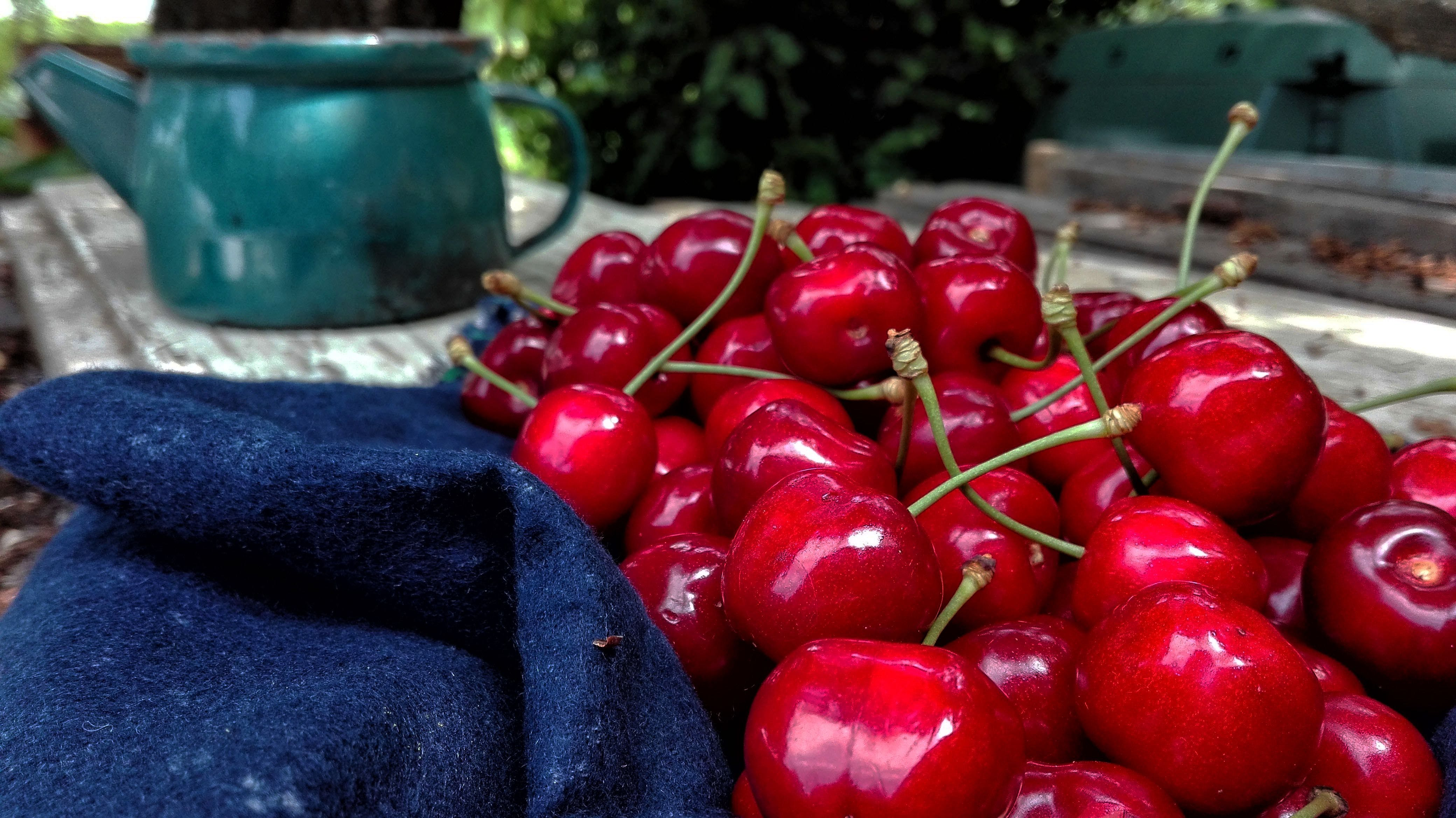 Kostenloses Stock Foto zu früchte, kirschen, reifen kirschen, rote früchte