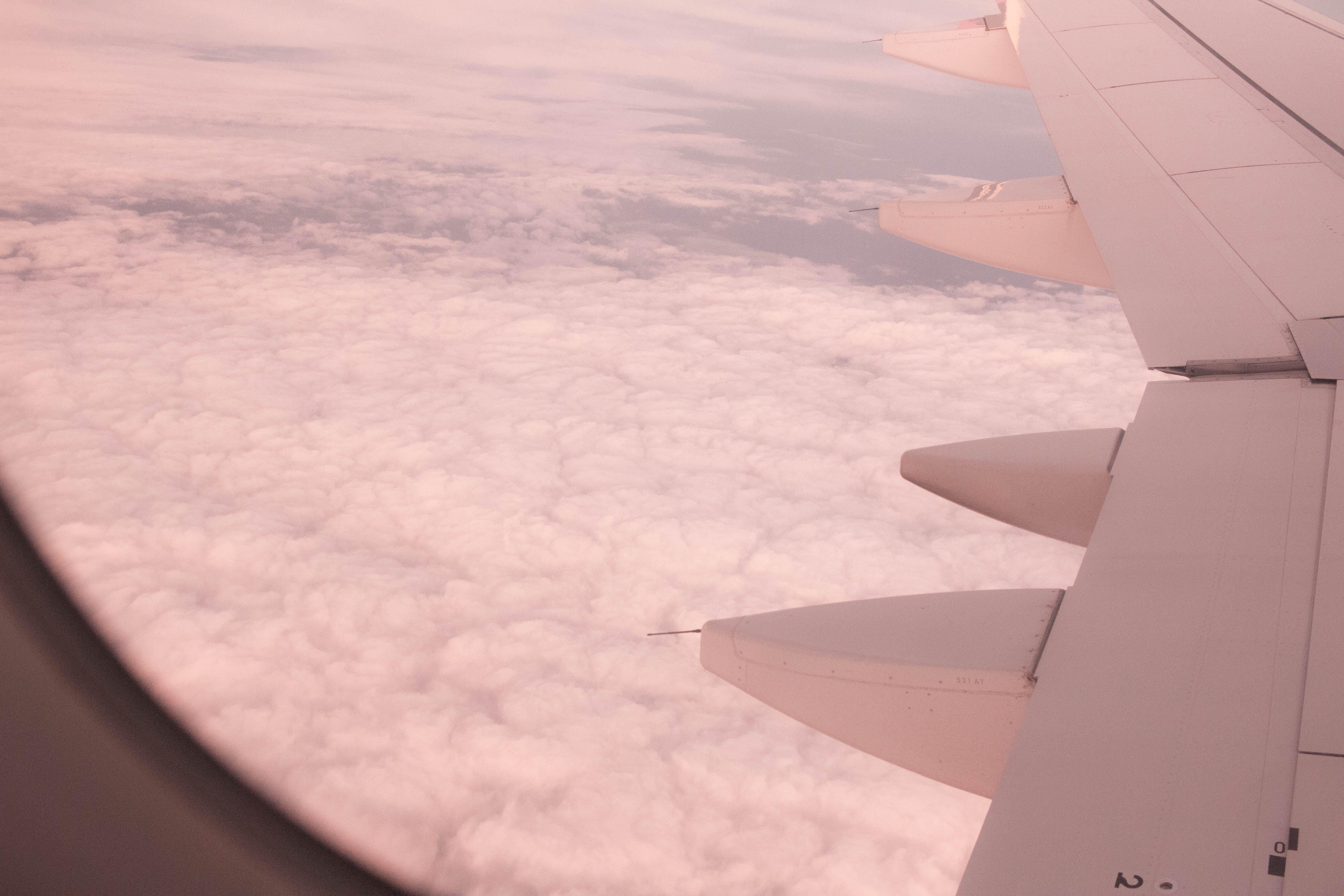 Fotobanka sbezplatnými fotkami na tému let, lietadlo, skay