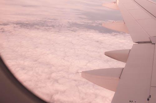 skay, 平面, 飛行 的 免费素材照片