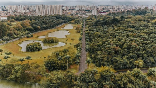 Aerial Photo Of A City Close-To A Park With Lush Vegetation
