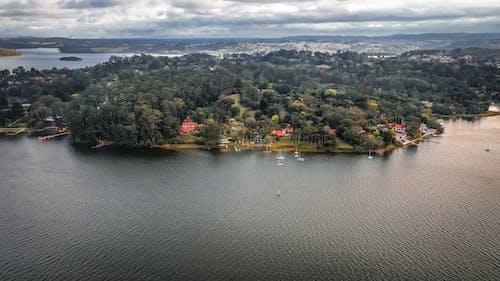 Fotos de stock gratuitas de agua, al aire libre, arboles, barca