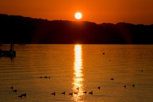 Δωρεάν στοκ φωτογραφιών με chiemsee, βραδινός ουρανός, δύση του ηλίου, λυκόφως