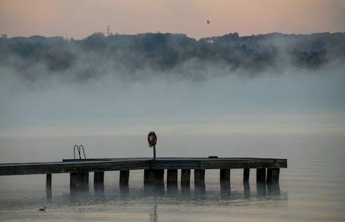 Δωρεάν στοκ φωτογραφιών με λίμνη, νωρίς το πρωί, ομίχλη, πρωίνο φως