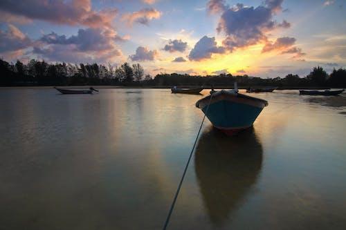 Immagine gratuita di acqua, alba, alberi, barche
