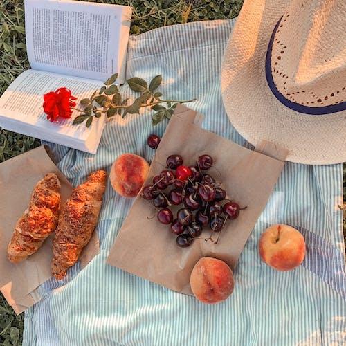 Δωρεάν στοκ φωτογραφιών με βιβλίο, κεράσια, πικνίκ, τρόφιμα