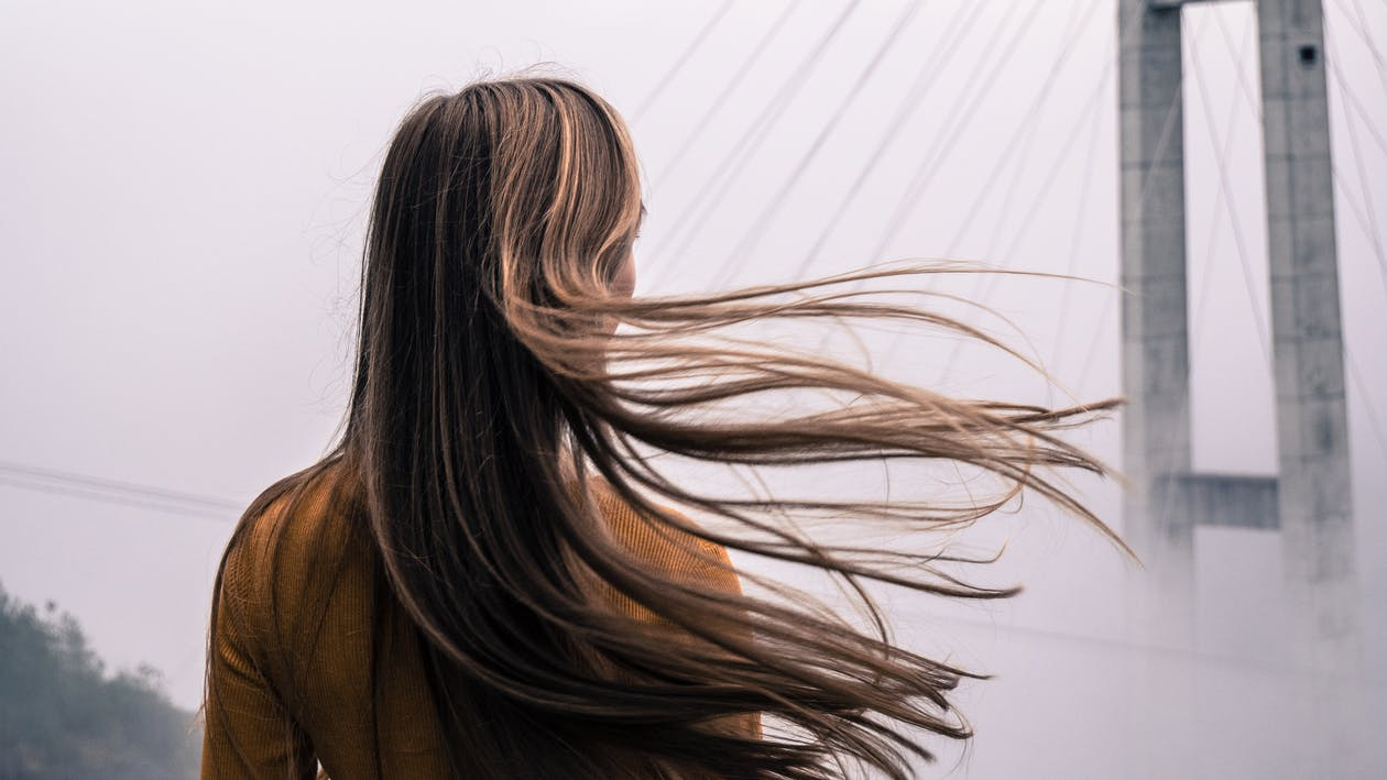 How to Treat Hair Dryness and Breakage