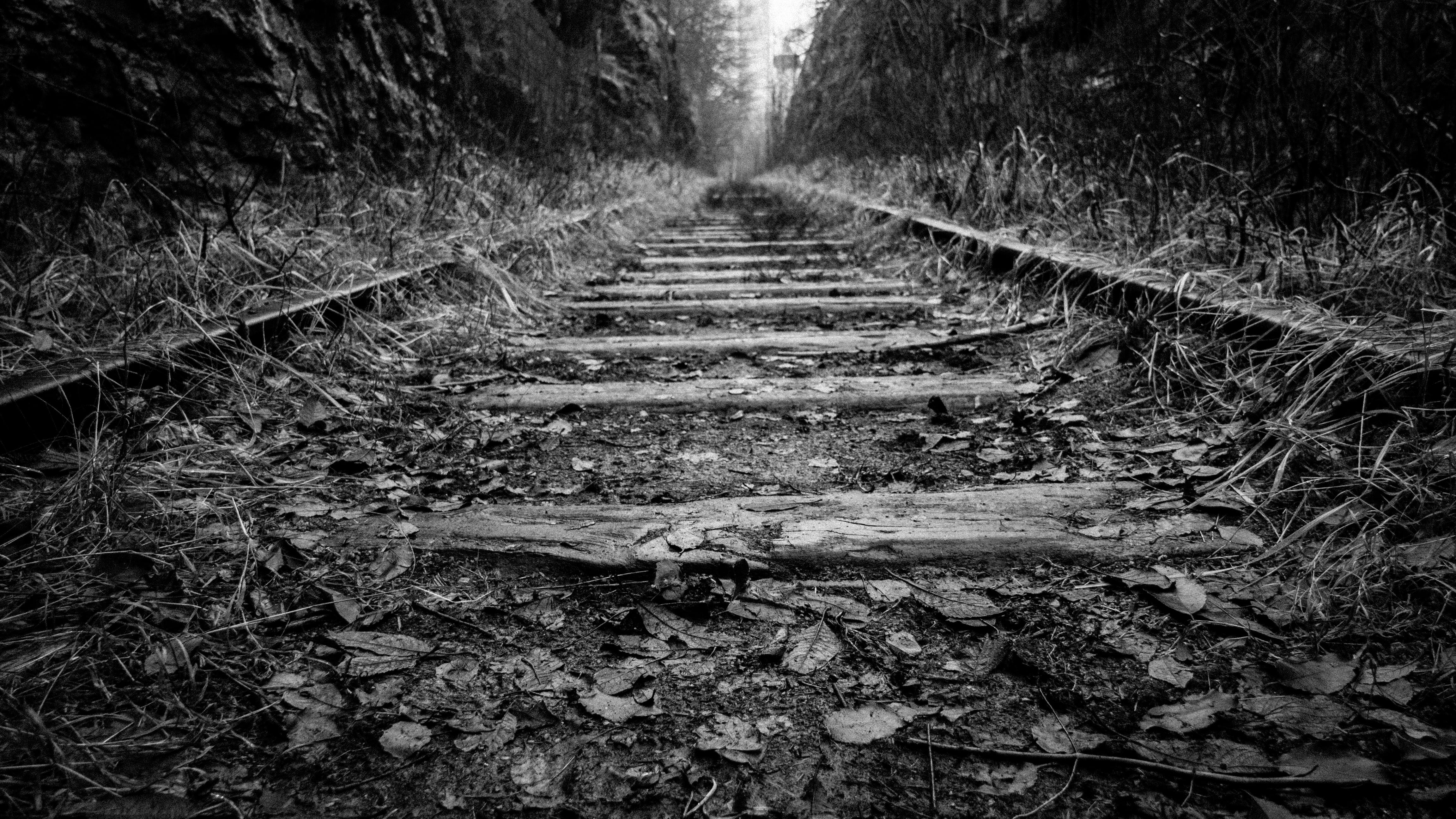black-and-white, perspective, railroad
