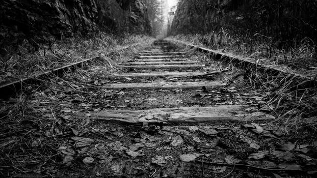 Free stock photo of black and white railroad railway perspective