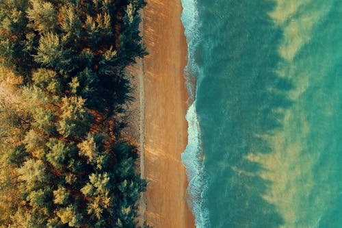 Bird's-eye View of Beach