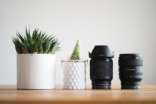 Immagine gratuita di attrezzatura, attrezzatura fotografica, lenti, natura morta