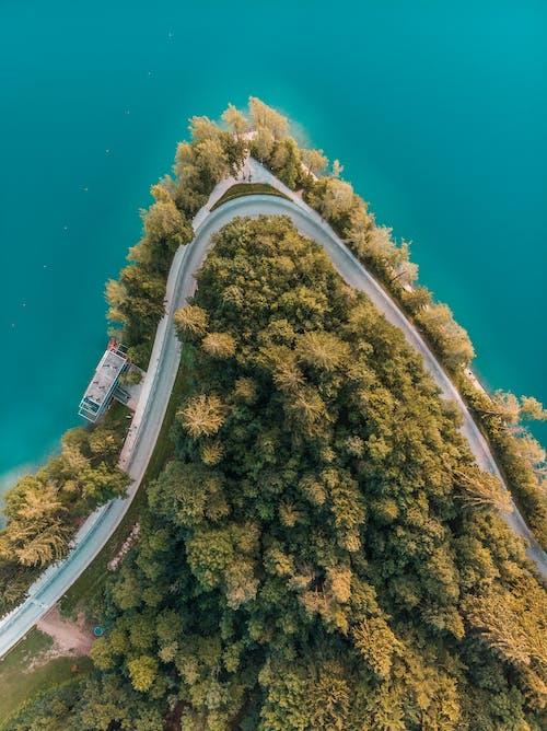 Безкоштовне стокове фото на тему «Аерофотозйомка, вид зверху, вода, дерева»