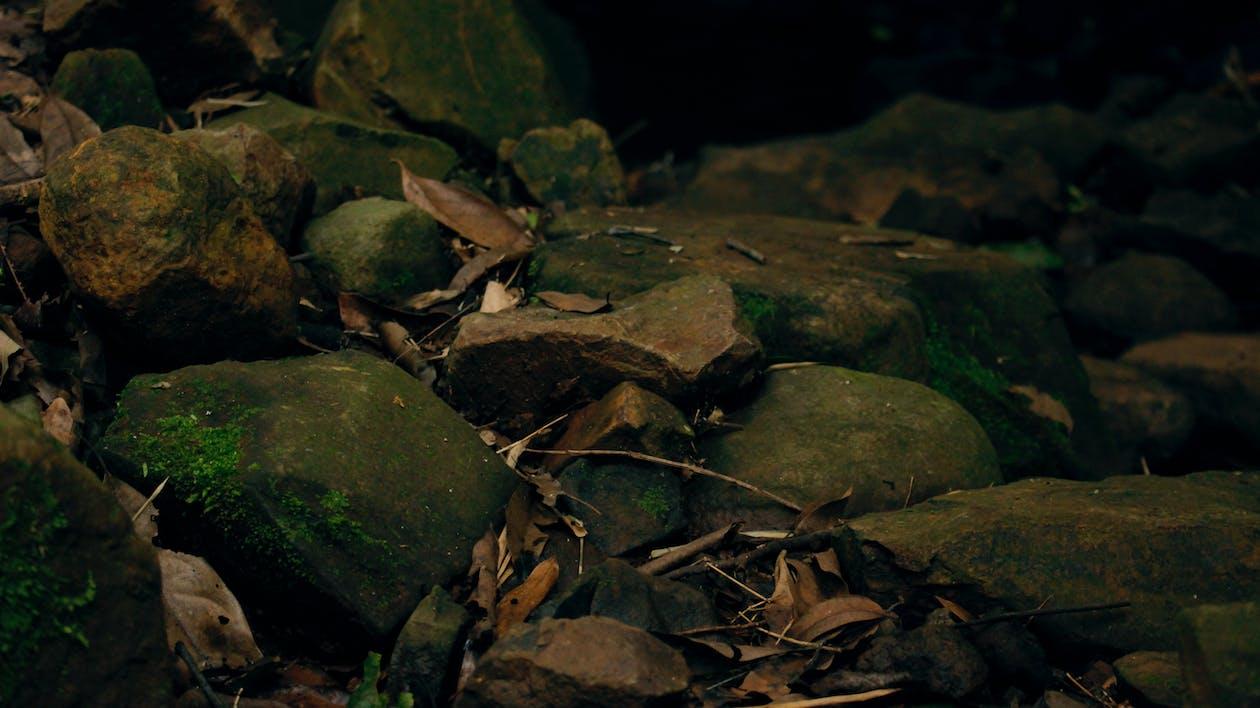 天性, 性質, 石