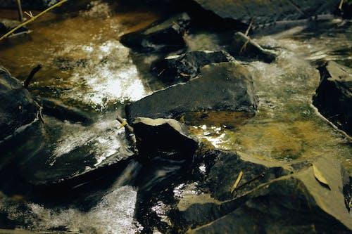 คลังภาพถ่ายฟรี ของ การถ่ายภาพ, การถ่ายภาพธรรมชาติ, ธรรมชาติ, น้ำ