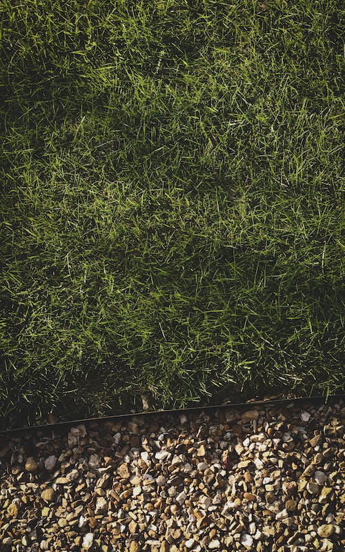 Free stock photo of apartment building, colors, garden, grass