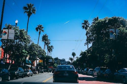 Free stock photo of california, cars, mood, palm trees