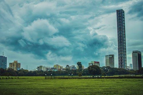 Free stock photo of #city, #grass