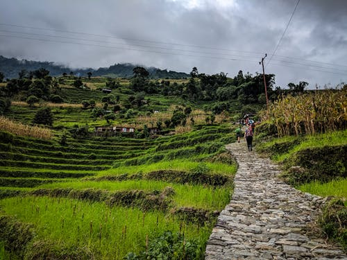 Free stock photo of farm, ghandruk, hiking, house