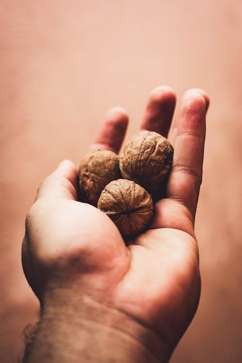 Three Walnuts on Left Palm