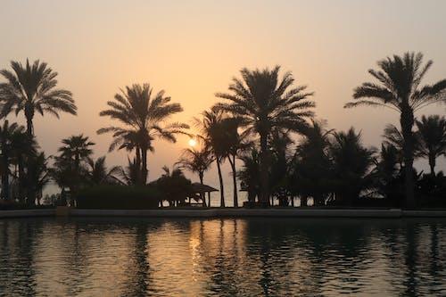Foto stok gratis dubai, matahari terbenam, pantai
