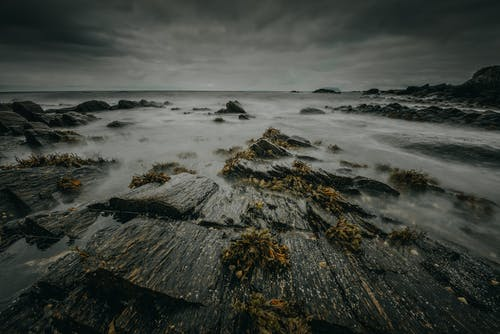 Gratis stockfoto met bij de oceaan, buiten, dag, daglicht