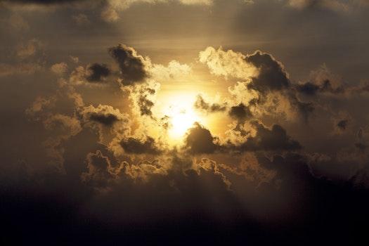 Free stock photo of sunset, beach, backlight, golden sun