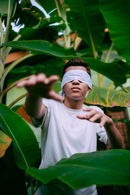 Ingyenes stockfotó ázsiai férfi, banán fák, banánlevél, bekötött szemmel témában