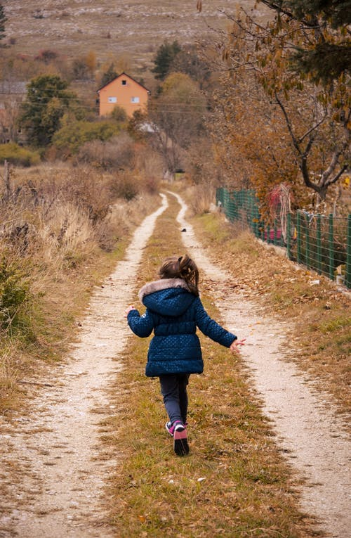 Free stock photo of autumn, autumn leaves, child, dirt road
