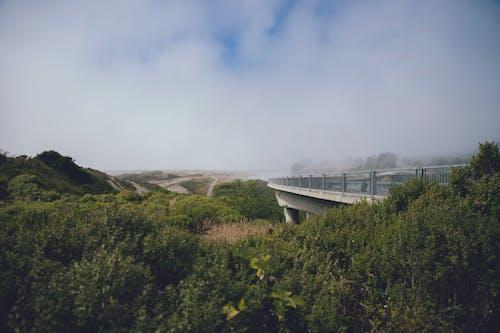 Free stock photo of 10 mile beach, beach, bridge
