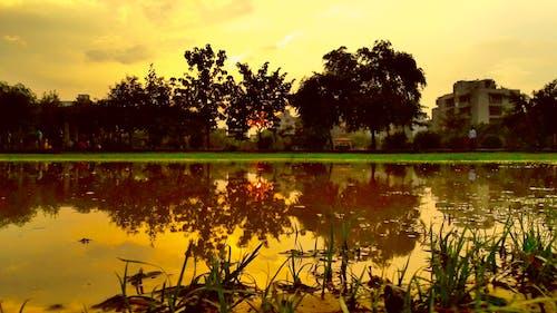 Fotobanka sbezplatnými fotkami na tému jazerá, príroda, prírodný park, vodné teleso