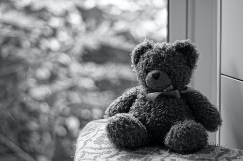 Grayscale Photography of Teddy Bear